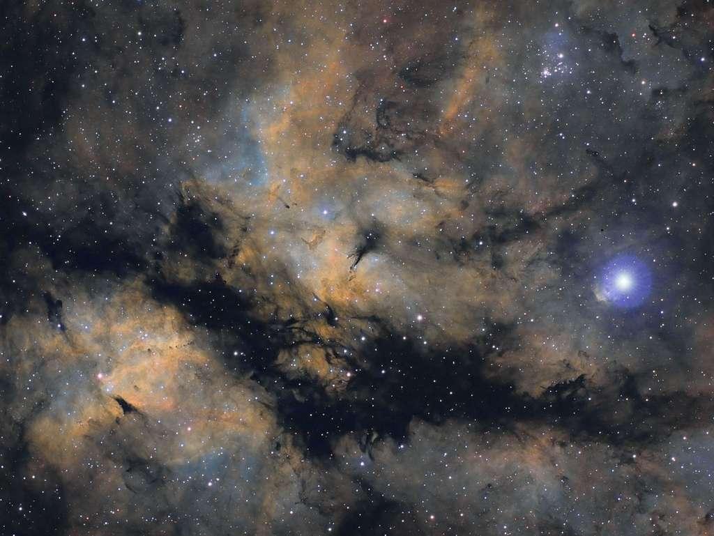 Nébulosités autour de Gamma du Cygne. © Bastien Foucher - Tous droits réservés