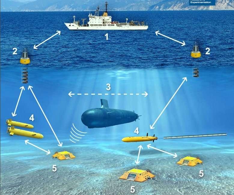Avec Janus, il est possible de réunir sur un même réseau des appareils marins et sous-marins qui communiquent sur une bande de fréquence autour de 11,5 kilohertz. © Centre for Maritime Research and Experimentation, Otan