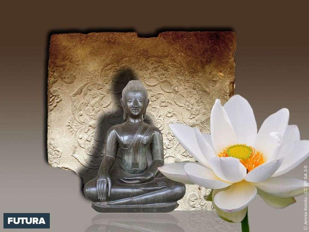 Savoir rester zen