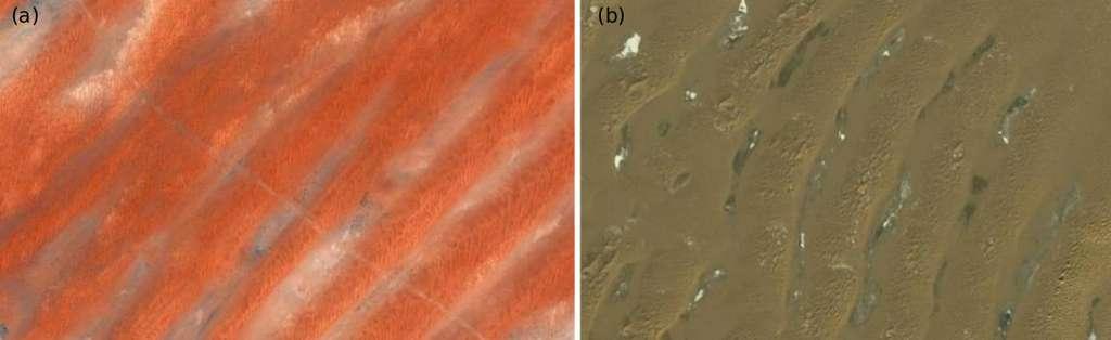 Dunes longitudinales de Mauritanie (7°34 ́58.99 Nord et 14°45 ́32.36 Ouest), (b) Dunes transverses en Chine (38°31 ́23.91 Nord et 105°05 ́40.97 Est). © CNRS, Insu