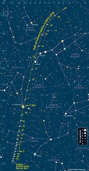 Parcours de la comète Catalina au cours des prochaines semaines, jusqu'à la fin janvier 2016. © Sky & Telescope