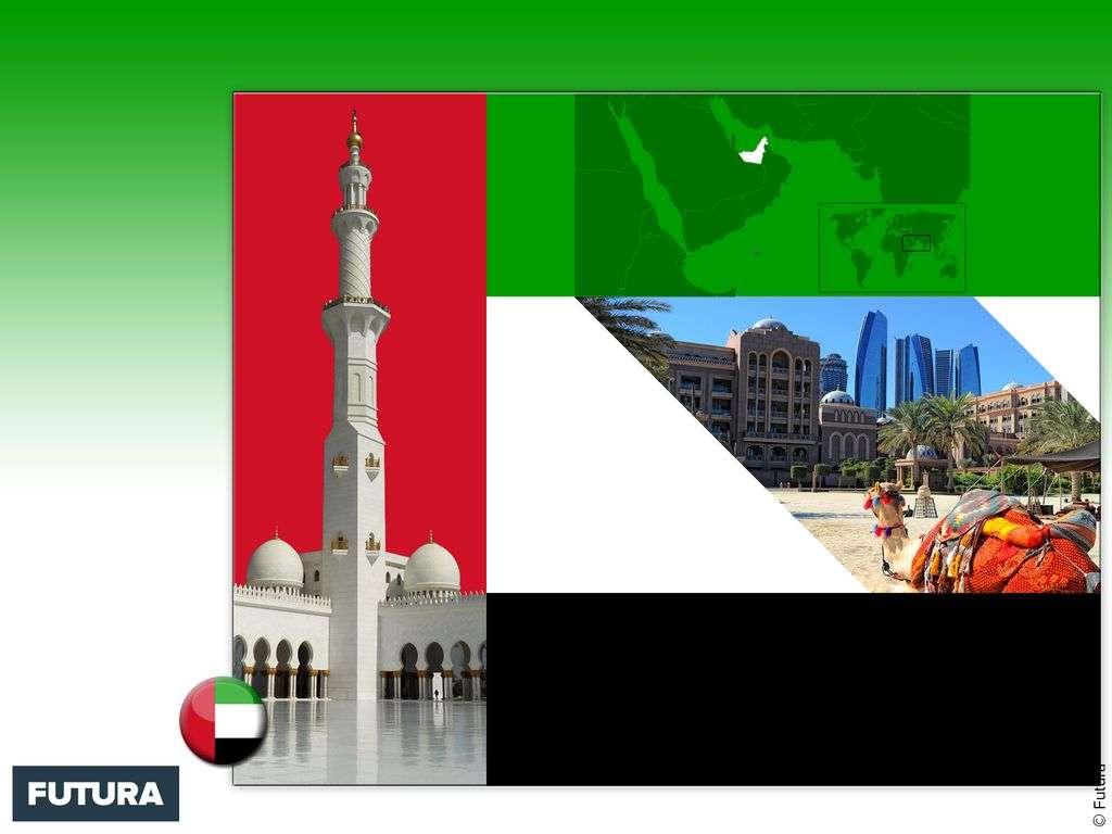 Drapeau : Émirats arabes unis