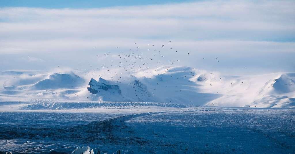Il existe des glaciers au niveau des pôles mais aussi des glaciers tropicaux et des glaciers tempérés. Ici, un paysage glaciaire. © Unsplash, DP