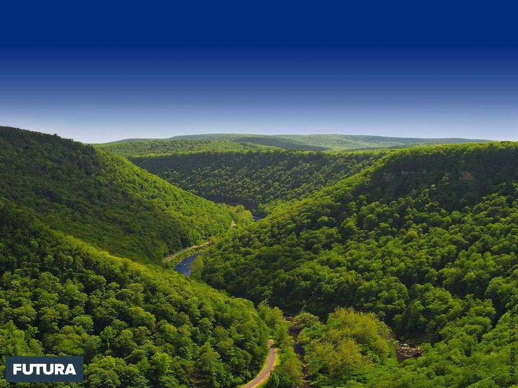Gorges de Pine Creek - Pennsylvanie