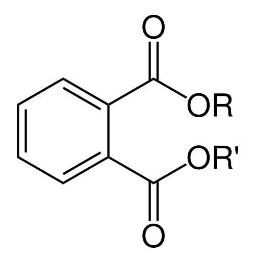 Les phtalates sont un ensemble de molécules composées d'un noyau benzénique et de deux groupements carboxyliques dont les chaînes alkyles (R) peuvent varier. © Bryan Derksen, Wikimedia, domaine public