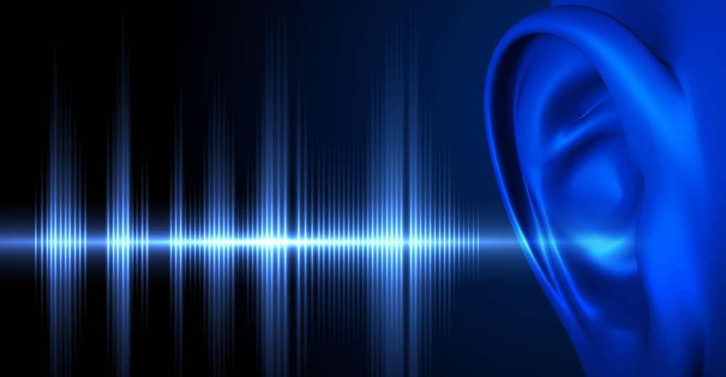 Fréquences entendues par l'oreille humaine. © Tatiana Shepeleva, Shutterstock