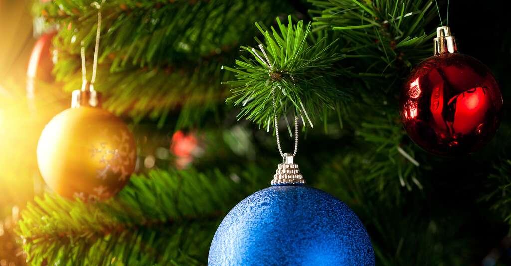 Décorations de Noël. © Nikkytok, Shutterstock