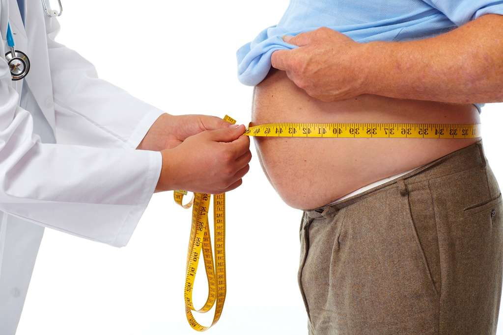Des molécules qui activeraient G3PP pourraient aider à prévenir l'obésité. © kurhan, Shutterstock