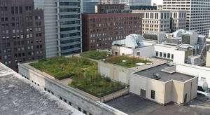 Cliquer sur l'image pour l'agrandir. Des toitures végétalisées pour rafraîchir les villes ? © Centre For Neighborhood Technology CC by-sa