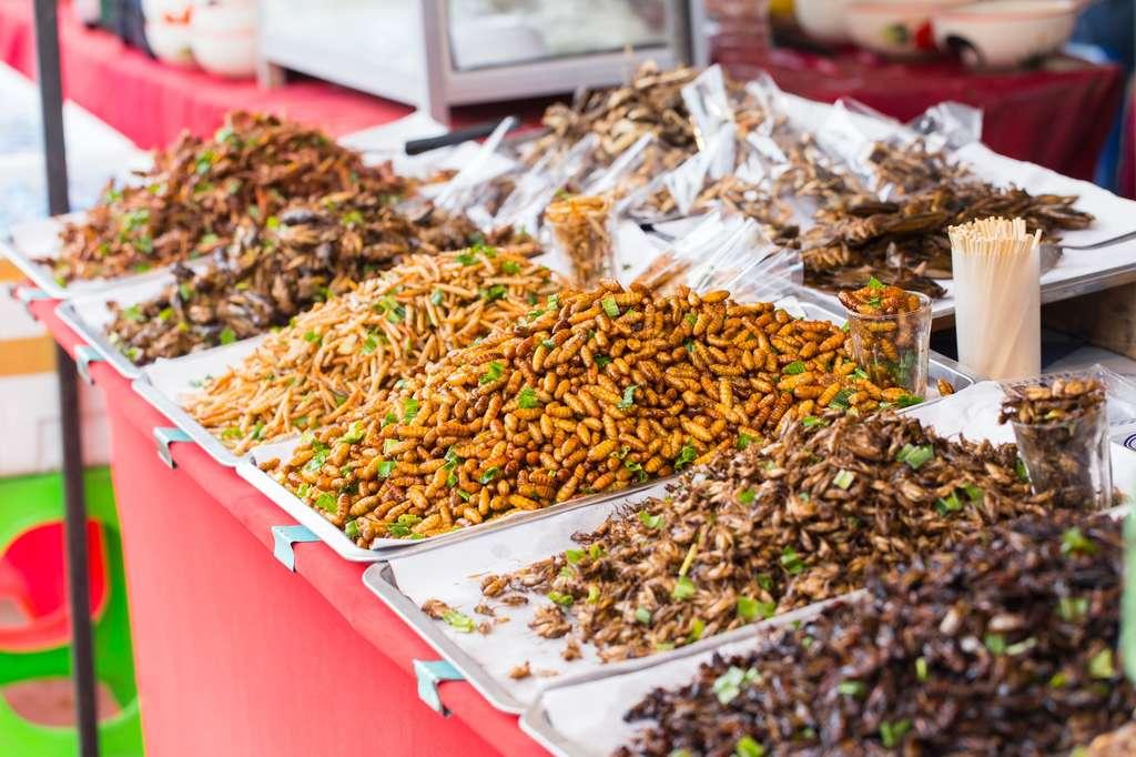En Asie, des commerçants vendent des insectes frits sur leurs étals. © coffeekai, Fotolia