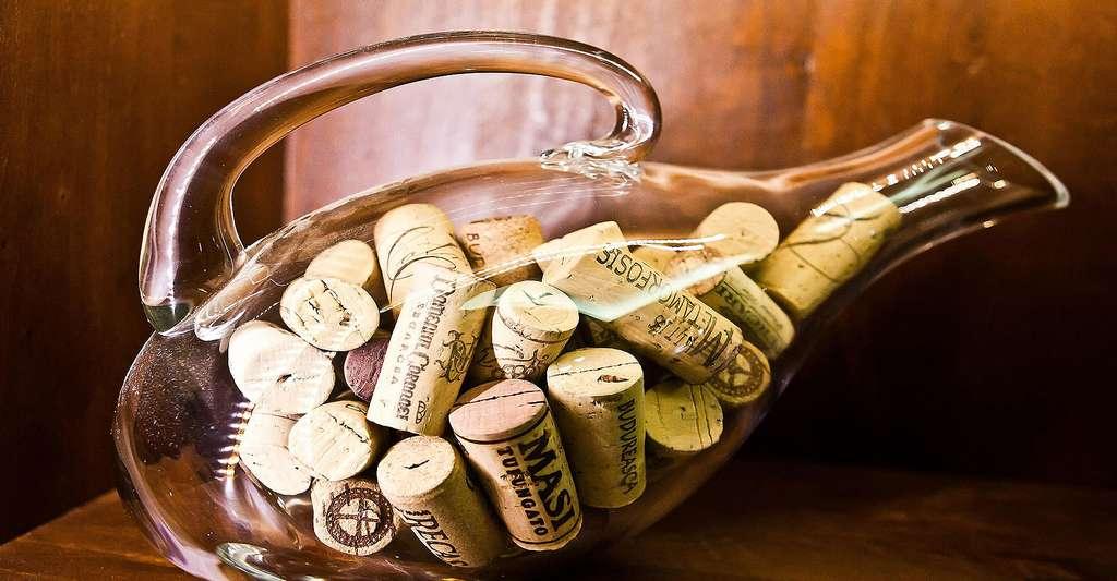 Le bouchon dans la bouteille. © Froot - Domaine public