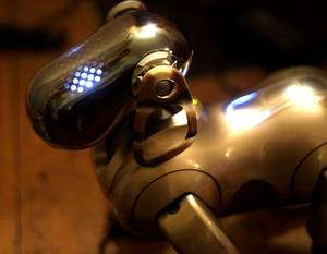 Le robot Aibo. © Sony, Jean-Baptiste Paris