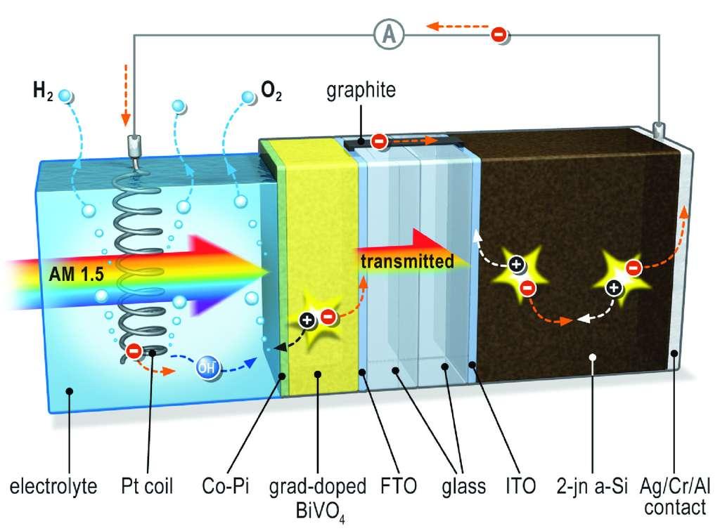 Quand la lumière (flèche arc-en-ciel) atteint le système, un potentiel électrique est créé. La couche d'oxyde métallique (grad-doped BiVO4) capte une partie de la lumière et sert de photoanode. La couche est reliée à la cellule solaire (en noir) par l'intermédiaire d'un pont conducteur en graphite. La cellule reçoit également une partie de la lumière, augmentant le potentiel électrique. L'oxygène se forme alors au niveau de la photoanode, tandis que l'hydrogène est dégagé au niveau d'une spirale de platine plongée dans l'eau et qui fait office de cathode.
