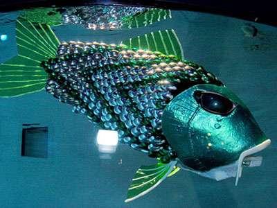 Un robot-carpe presque aussi vrai que nature ! © Dr Jindong Liu, University of Essex
