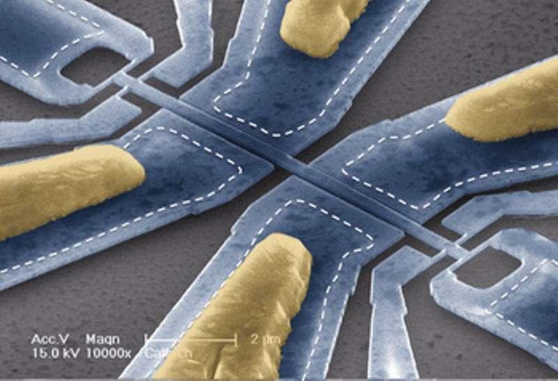 Une photo prise au microscope électronique montrant le Nem. La section en forme de barre au centre vibre latéralement. L'échelle est donnée par une ligne en bas à gauche indiquant une distance de deux microns (2 millionièmes de mètre). © Caltech Scott Kelber and Michael Roukes