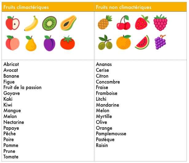 À l'inverse des fruits non climactériques, les fruits climactériques continuent de mûrir une fois cueillis. © C.D, Futura-Sciences