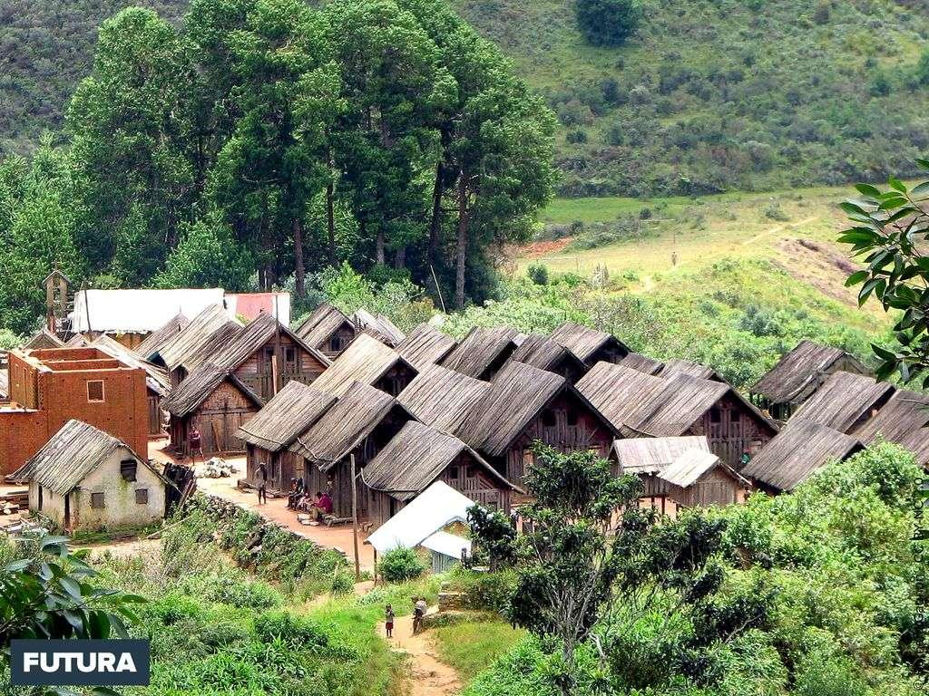Village zafimaniry Ifasina, Province de Fianarantsoa -Madagascar