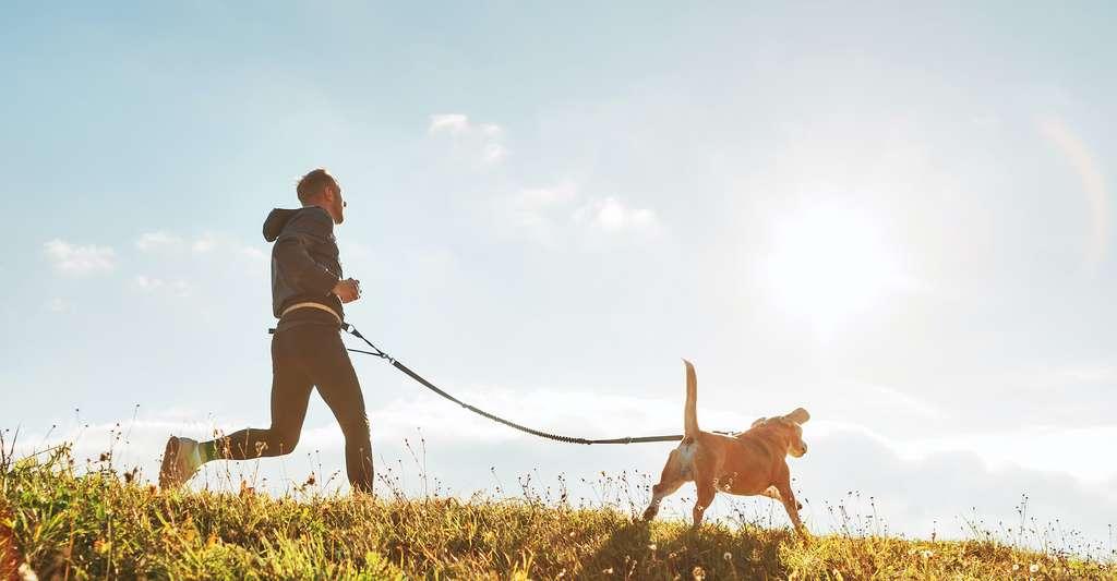 Parce qu'il nous encourage à faire des activités physiques régulières, notre chien est bon pour notre santé. © iSoloviova Liudmyla, Adobe Stock