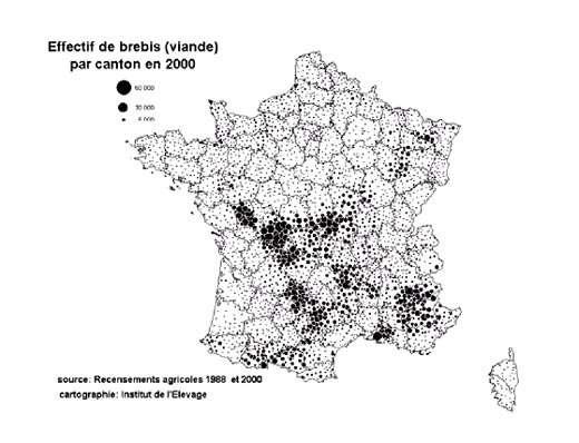 © WWF.fr