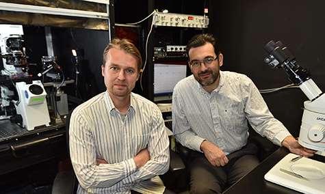 Frans Vinberg (à gauche) et Vladimir J. Kefalov, devant un outil qu'ils ont développé pour détecter la réponse à la lumière de cellules rétiniennes. © Robert Boston