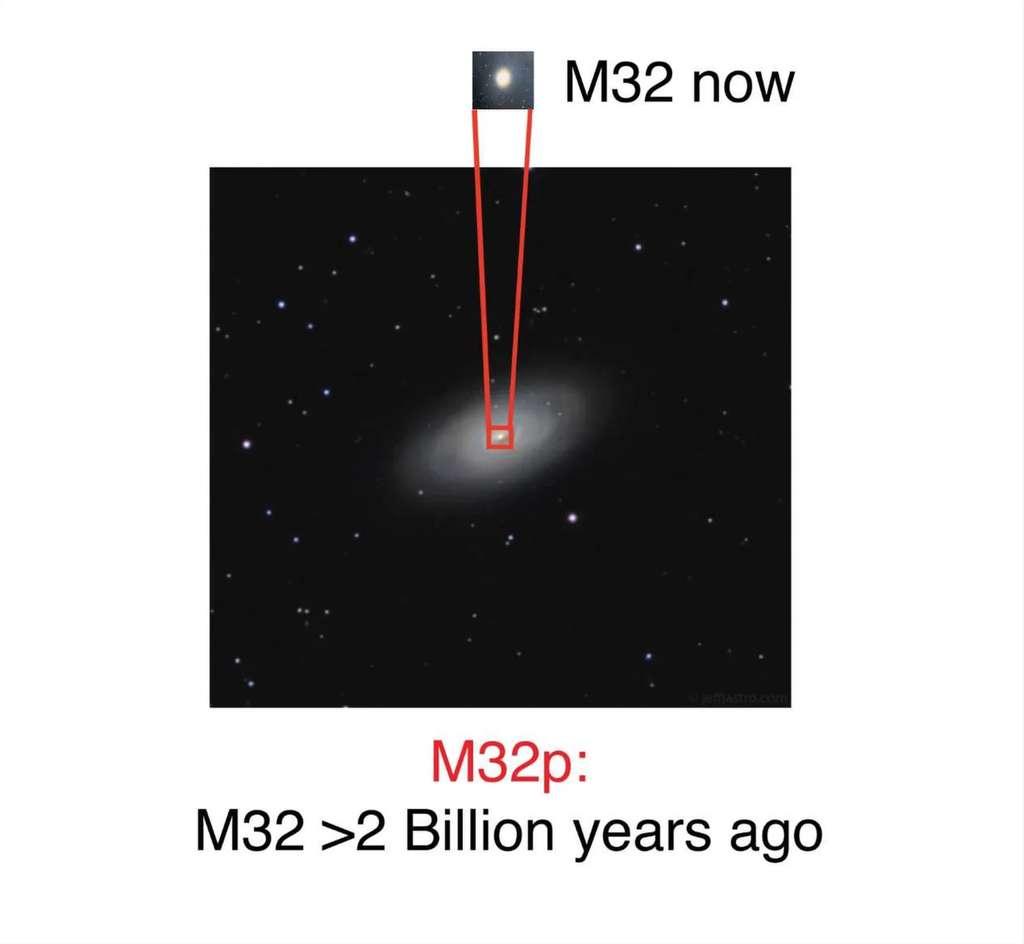 Illustration de M32p, l'ancienne galaxie spirale avant qu'elle ne soit dévorée par Andromède. Deux milliards d'années plus tard, il n'en resterait plus que les os visibles sous la forme de M32, galaxie satellite de la grande M31, et probable ancien noyau de M32p. © Richard D'Souza, Eric Bell, université du Michigan