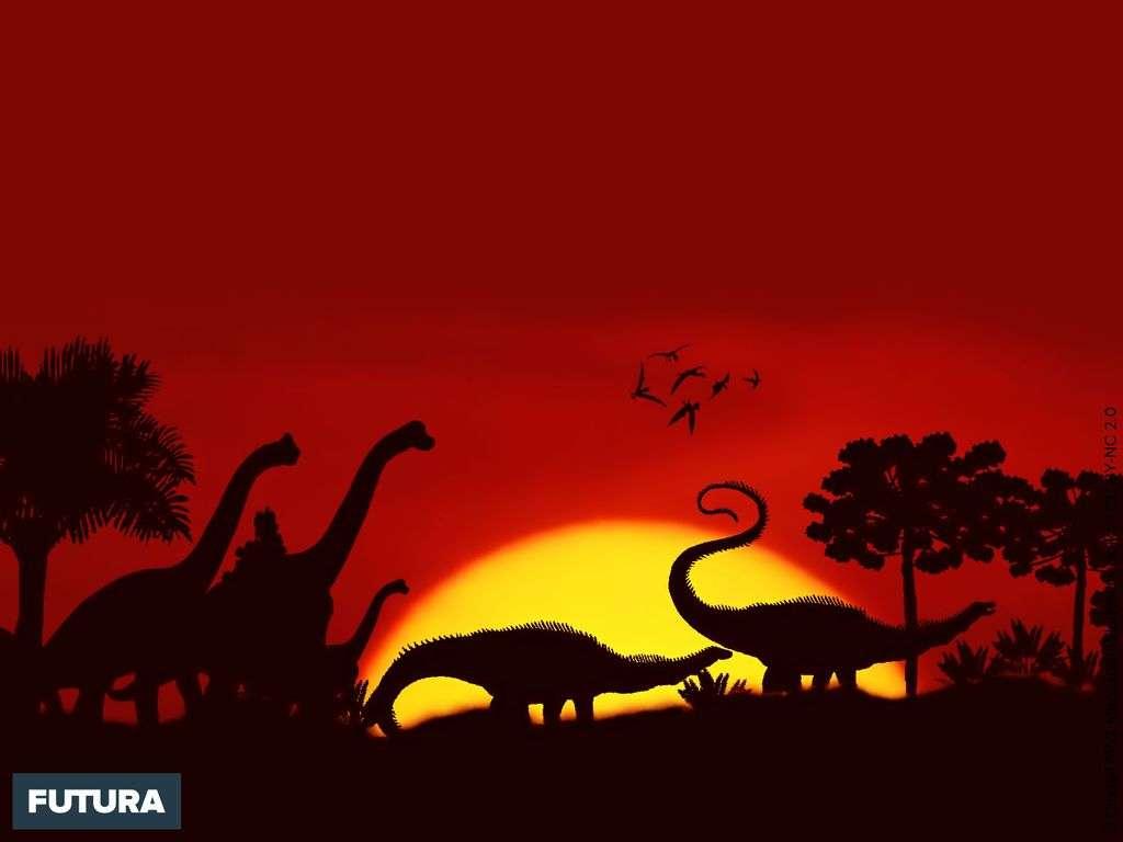 Du temps des dinosaures...