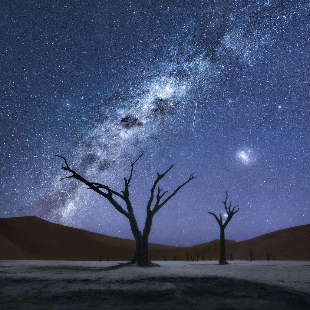 L'âme de la nuit, Deadvlei, parc national du Namib-Naukluft, Namibie