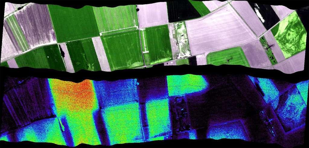 Fluorescence émise par différents types de végétation. Cette carte a été tracée depuis l'instrument HyPlant utilisé pour démontrer la faisabilité technique de Flex. Il possède deux spectromètres imageurs, qui sont des caméras sensibles à différentes longueurs d'onde. L'une a une couverture large, du bleu à l'infrarouge moyen ; l'autre va du rouge au proche infrarouge et sépare précisément les longueurs d'onde pour repérer la fluorescence. © U. Rascher, Forschungszentrum Jülich