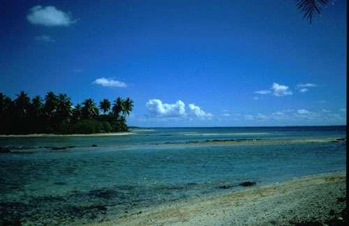 Plage motu Polynésie © Catherine Gabrié WWF - Tous droits de reproduction interdit