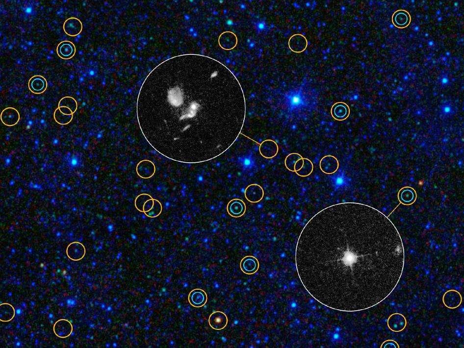 Sur cette image, les cercles bleus montrent les quasars et les trous noirs supermassifs déjà détectés dans le visible. En observant ceux détectés par Wise avec le télescope Hubble, on voit des différences nettes qui s'expliquent par le fait que les nouveaux candidats au titre de quasar sont obscurcis par d'épais manteaux de poussières. © Nasa