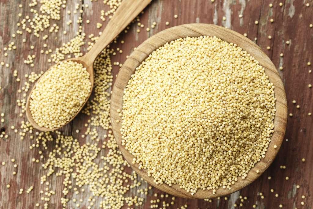 Le millet est une céréale très digeste. © alexshyripa, Fotolia