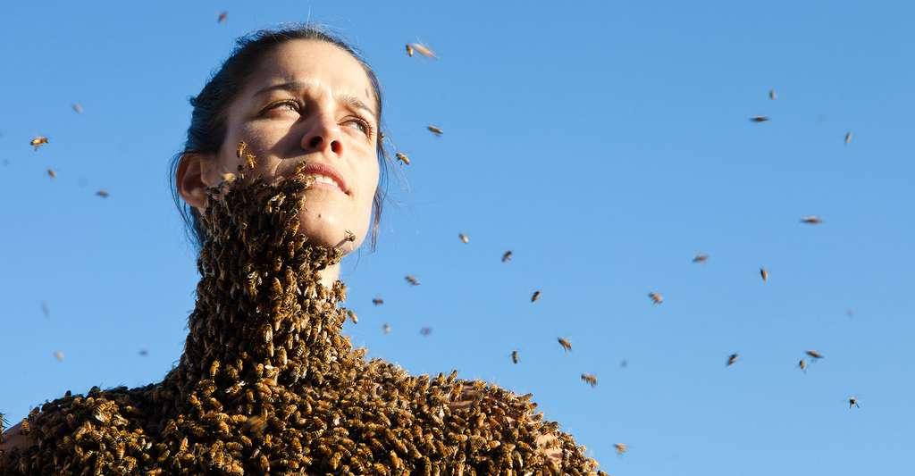 Aimez-vous les abeilles jusqu'à les porter sur vous ? © Chrisy10123, CC by-nc 4.0