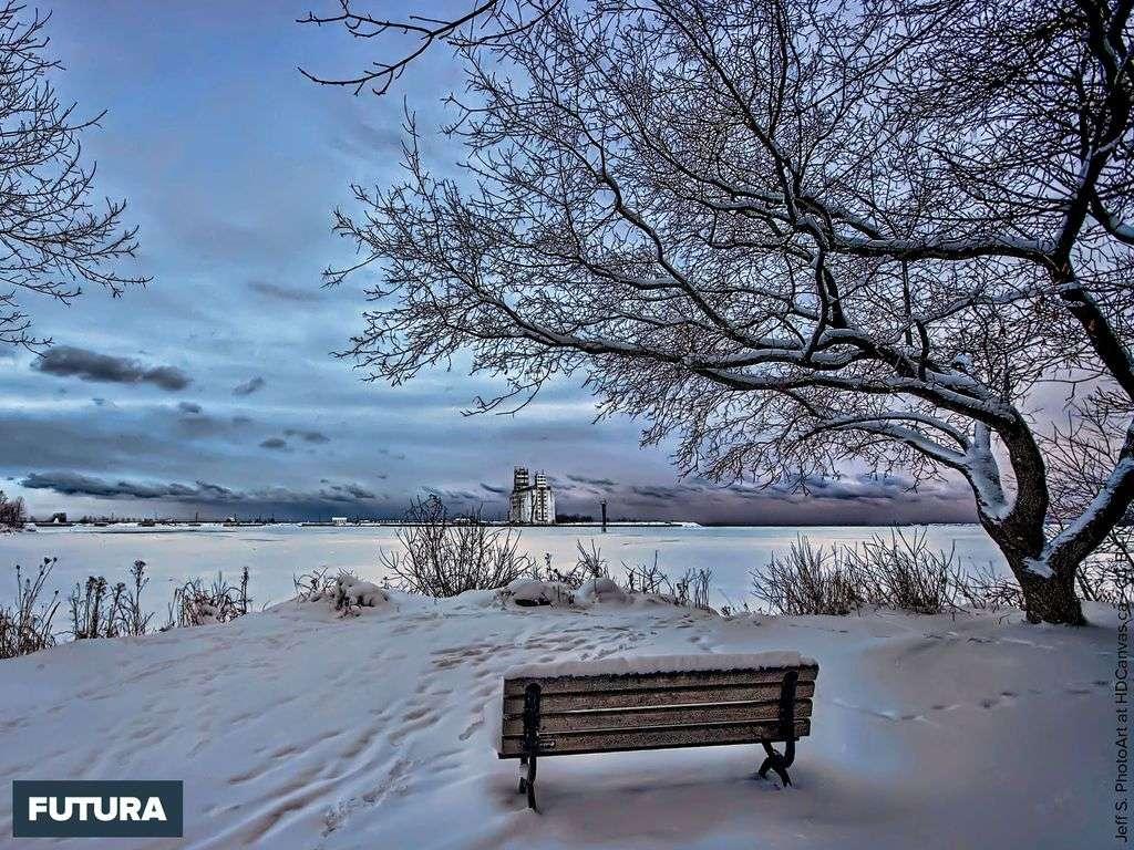 L'hiver, la saison où la nature se repose