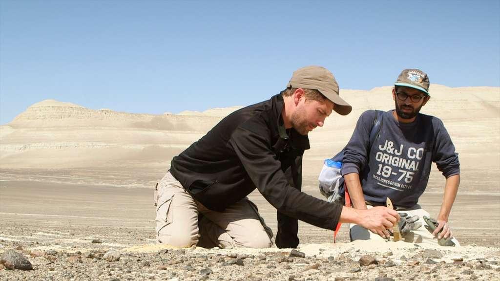 C'est au Pérou, ici à Pisco, que les paléontologues cherchent les ancêtres du dauphin rose. © French Connection Films