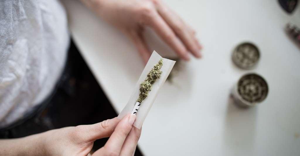 Aux États-Unis, des maisons de retraite autorisent à leurs résidents de recourir au cannabis, mais seulement pour soulager leurs douleurs et dans le cadre d'une consommation étroitement encadrée. © Tought Catalog, Unsplash