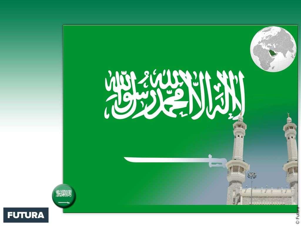 Drapeau : Arabie Saoudite