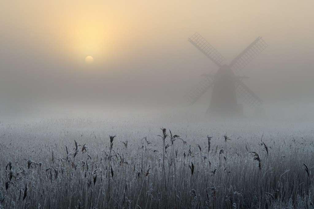 Un paysage de la campagne anglaise sous un pâle soleil éteint par le brouillard. Comment ne pas penser à Turner et à Tess de Roman Polanski ? © Andrew Bailey, Royal Photographic Society