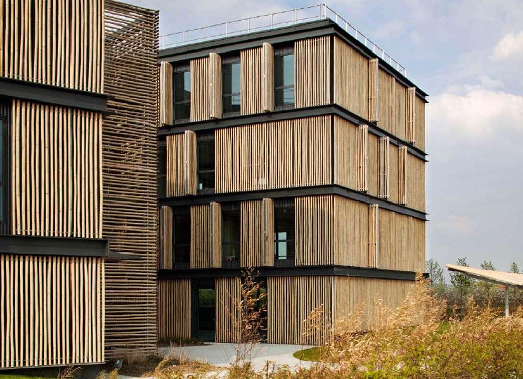 Caillebotis verticaux en bambou. Protection solaire et parement des façades exposées au soleil. Bureaux BBC à Sénat. © Monica Donati Architectes, Dunod - Tous droits réservés