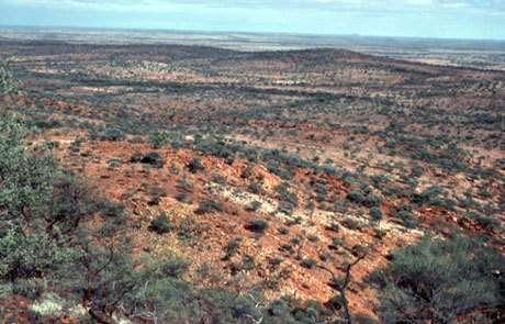 Jack Hills red metasandstones Australia, les roches contenant les plus vieux zircons. © DR