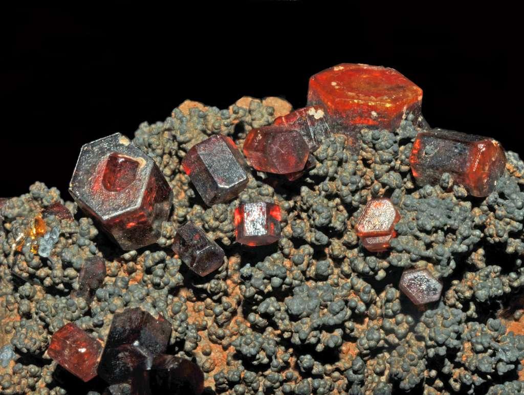 La goethite est un minerai de fer. Ici, des cristaux de vanadinite (rouge) sur goethite. © Parent Géry, Wikipédia, CC by-sa 3.0