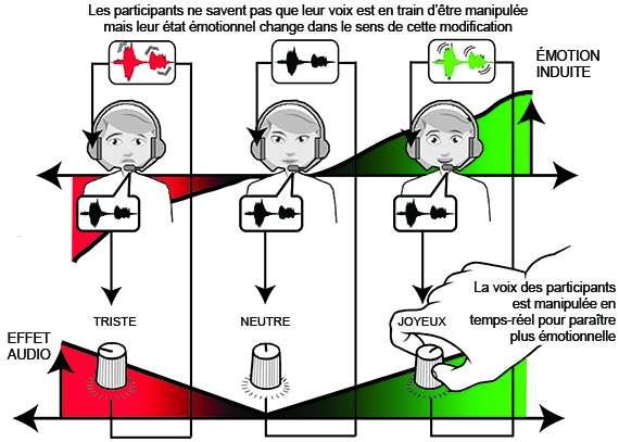 Les différentes possibilités réalisées avec la plateforme. © CNRS