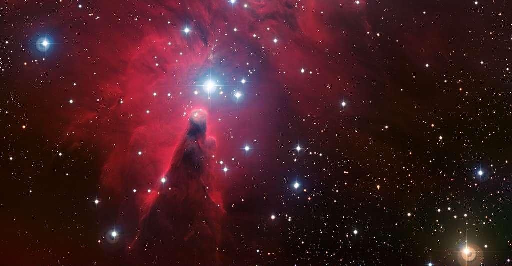 NGC 2264 prise par l'Observatoire européen austral. © ESO