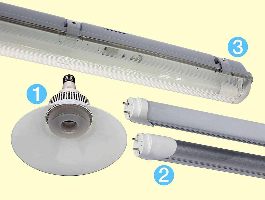 1. Ampoule LED « Cloche » à culot à vis E27/E40 : Ø 190 x H. 275 mm, 6840 lm en 80 W ; 2. Tubes « Néons LED » T5 à T8, culots à broches doubles G13, L. 60 à 150 cm, 9 à 50 W ; 3. Réglette étanche pour tube LED T8 de L. 120 cm, IP65. © Silamp