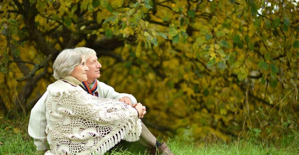 Quel regarde porter sur la maladie d'alzheimer ? © Ruslan Guzov - Shutterstock