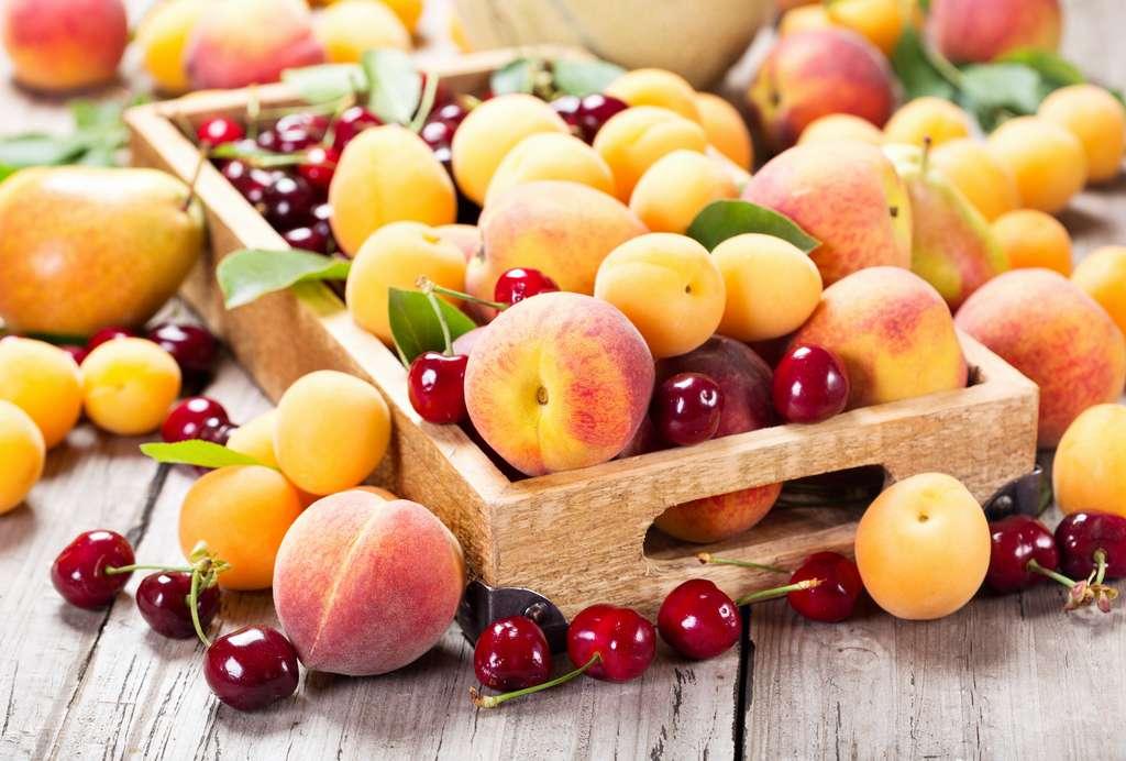 Cerise, pêche, melon,… Juillet est l'un des mois qui offre la plus grande diversité de fruits. © Nitr, Adobe Stock