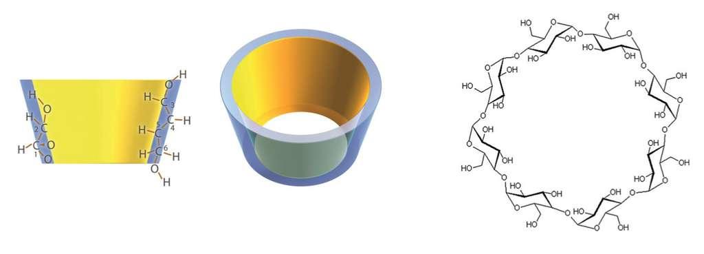 Les cyclodextrines forment une structure en cône tronqué dans laquelle on peut loger des composés hydrophobes afin de les rendre hydrosolubles. © Martin Purpura et al, European Journal of Nutrition, 2017