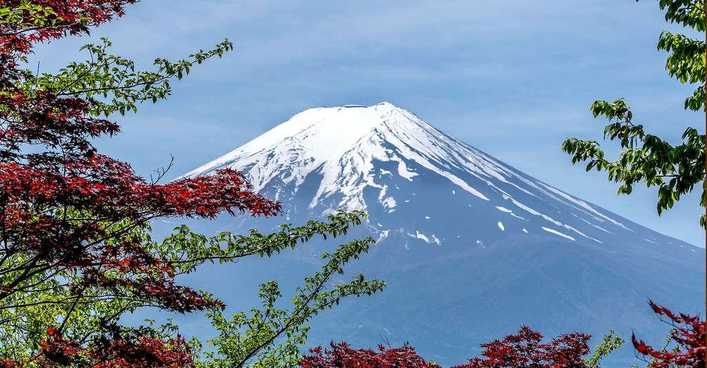 Le mont Fuji avec son sommet enneigé. © Oadtz, CCO