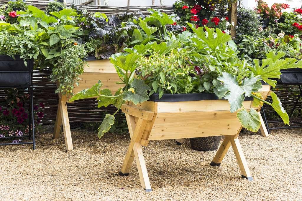 Tentez l'expérience et cultivez les pommes de terre en pot ou tout autre légume. © Tottoto, Fotolia