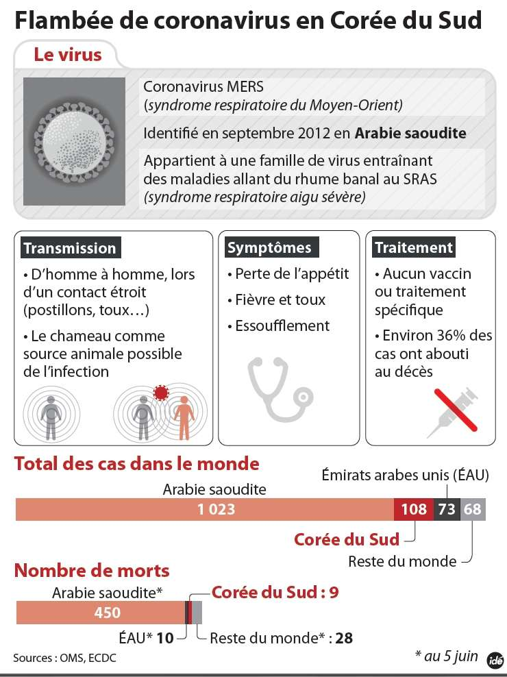 Cette maladie respiratoire est apparue en 2012 en Arabie Saoudite et a été imputée à un virus, le MERS-CoV, baptisé Middle-East respiratory syndrome coronavirus (coronavirus du syndrome respiratoire du Moyen-Orient). © Idé
