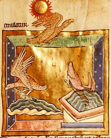 Aigles, Moyen Âge. Miniature à l'or.